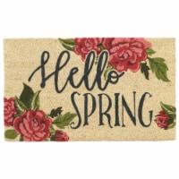DII Hellow Spring Doormat - 1