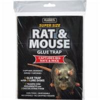Harris Glue Rat & Mouse Trap BLKRAT-1 - 1