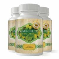 Ginkgo Biloba Powerful Brain Booster (60 capsules) - 1 unit