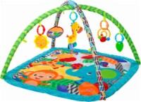 Bright Starts™ Zippy Zoo Infant Activity Gym - Blue