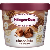 Haagen-Dazs Chocolate Ice Cream Cup