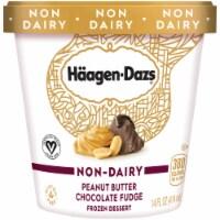 Haagen-Dazs Non-Dairy Peanut Butter Chocolate Fudge Frozen Dessert
