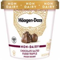 Haagen-Dazs Non-Dairy Gluten Free Chocolate Salted Fudge Truffle Frozen Dessert