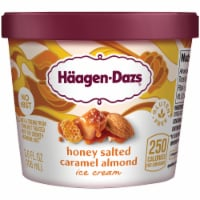 Haagen-Dazs Gluten Free Honey Salted Caramel Almond Ice Cream