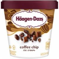 Haagen-Dazs Gluten Free Coffee Chip Ice Cream
