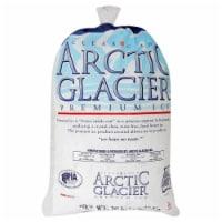 Arctic Glacier Premium Ice Bag