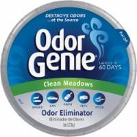DampRid Odor Genie 8 Oz. Clean Meadows Solid Air Freshener FG69CM - 8 Oz.