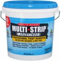 Back to Nature 657G1A Multi Strip Adv Prof Paint Remover gallon - 1 gallon each