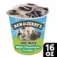 Ben & Jerry's Vegan Non-Dairy Frozen Dessert Mint Chocolate Cookie - 16 fl oz