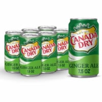 Canada Dry Ginger Ale Soda