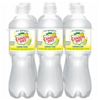 Canada Dry Sparkling Lemon Lime Seltzer Water