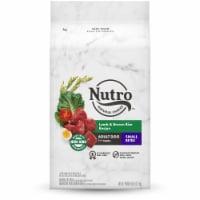Nutro Wholesome Essentials Small Bites Adult Lamb & Rice Recipe Dry Dog Food - 5 lb