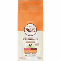 Nutro Wholesome Essentials Small Breed Chicken Brown Ride & Sweet Potato Dog Food