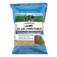 Jonathan Green 11970 3 lbs. Sod Maker Seed