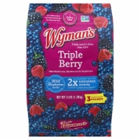 Wyman's of Maine Triple Berry with Wild Blues Frozen Fruit