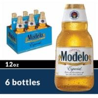 Modelo Especial Imported Beer - 6 bottles / 12 fl oz