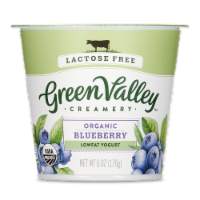 Green Valley Lactose Free Organic Blueberry Lowfat Yogurt
