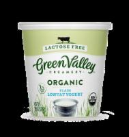 Green Valley Organic Lactose Free Plain Lowfat Yogurt