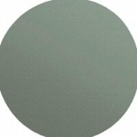 Finish 1st PSA Sanding Disc,220 Grit,Gray,PK50 HAWA 11006-035