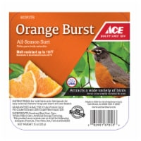 Ace Orange Burst Assorted Species Suet Beef 11 oz. - Case Of: 12;