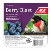 Ace Berry Blast Assorted Species Suet Beef 11 oz. - Case Of: 12;