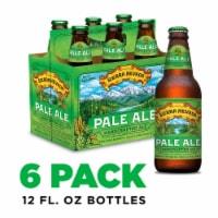 Sierra Nevada Brewing Co. Pale Ale Beer 6 Bottles