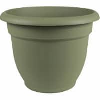 Bloem Ariana 6.5 In. H. x 6 In. Dia. Plastic Self Watering Thyme Green Planter - 1