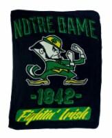 Retro Notre Dame Plush Micro Raschel Throw Blanket - Twin
