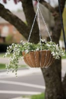Panacea Steel Hanging Basket White - Case Of: 1;