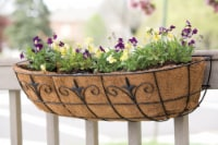 Living Accents Steel Window Planter Black - Case Of: 1; - Count of: 1