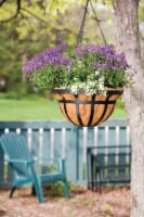 Living Accents Steel Hanging Basket Black - Case Of: 1; - Count of: 1