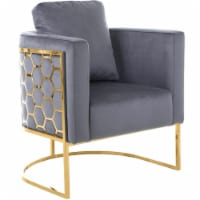 Meridian Furniture Casa Gray Velvet Chair with Gold Iron Metal Base - 1