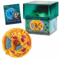 Tedco Toys 32371-WHI Ein-Os Bio Signs White Blood Cell - 1