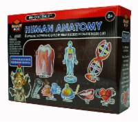Tedco Toys Human Anatomy Science Kit - 1