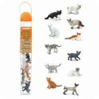 Domestic Cats TOOB - lb