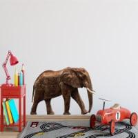 African Elephant Vinyl Wall Decal - PAS13 - 1