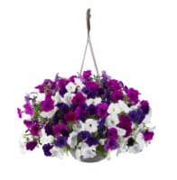 Premium Flowering Hanging Baskets