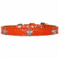 Mirage Pet 720-15 ORC16 Silver Star Widget Croc Dog Collar, Orange - Size 16