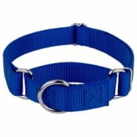 Mirage Pet 124-1M BLXL Plain Nylon Martingale Dog Collar, Extra Large - Blue - 1