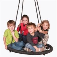 M&M Sales Enterprises MM00152 46 in. Web Riderz Web Swing - 1