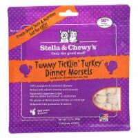 PF 84000114 3.5 oz Freeze Dried Tummy Ticklin Turkey Cat - 8 per Case