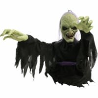 Haunted Hill Farm Animatronic Witch Halloween Decoration