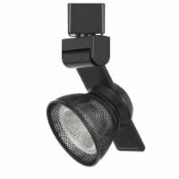 Saltoro Sherpi 12W Integrated LED Metal Track Fixture with Mesh Head, Dark Black - 1 unit
