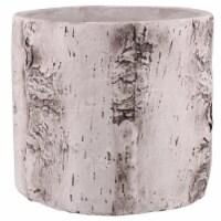 Saltoro Sherpi Faux Birch Cement Framed Cylinder Planter, Large, White - 1 unit
