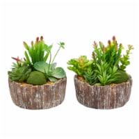 Set of 2 Faux Succulents  Assorted  8  Tall - Greenery Arrangements in Decorative Concrete - 1 unit