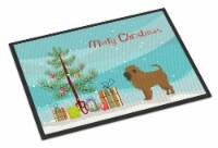 Tan Affenpinscher Christmas Tree Indoor or Outdoor Mat 24x36