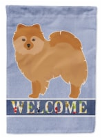 Carolines Treasures  CK3648CHF German Spitz Welcome Flag Canvas House Size - House Size