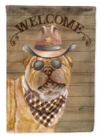 Carolines Treasures  CK6358CHF Shar Pei Country Dog Flag Canvas House Size