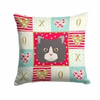 Carolines Treasures  CK5150PW1414 Poodle Cat Love Fabric Decorative Pillow