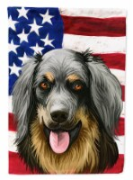 Carolines Treasures  CK6561CHF Hovawart Dog American Flag Flag Canvas House Size - House Size